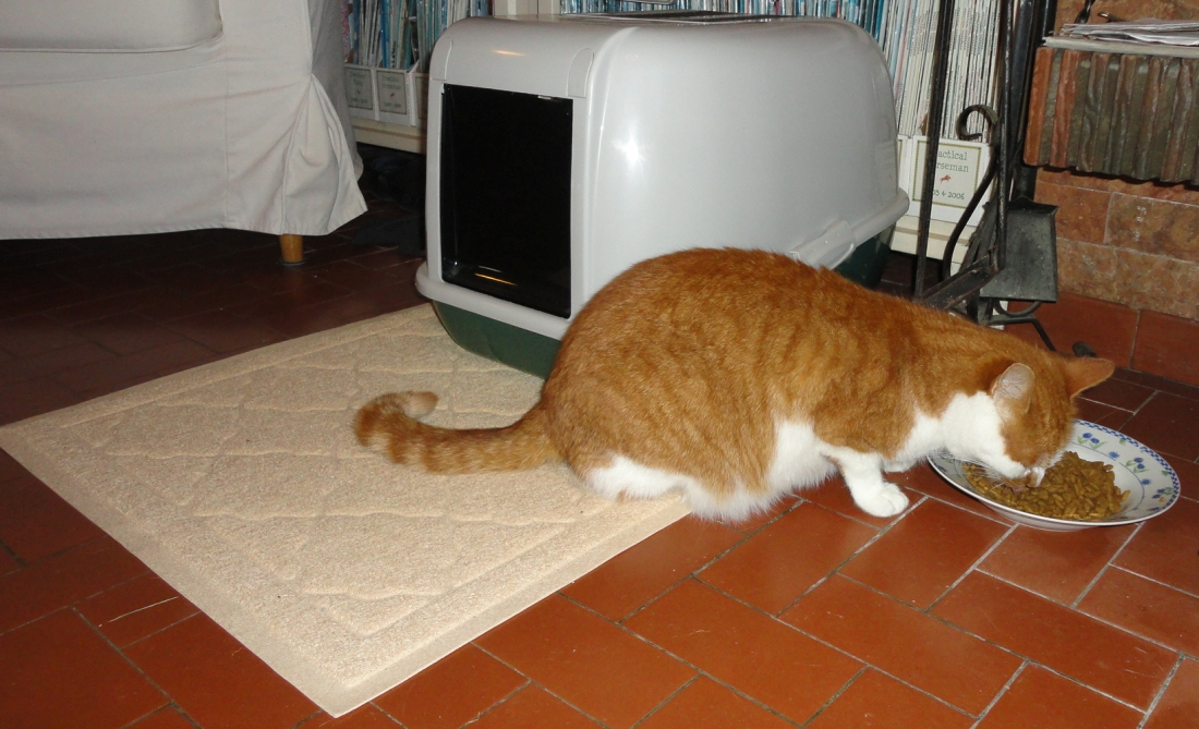 Easyology Extra Large Cat Litter Box Mat